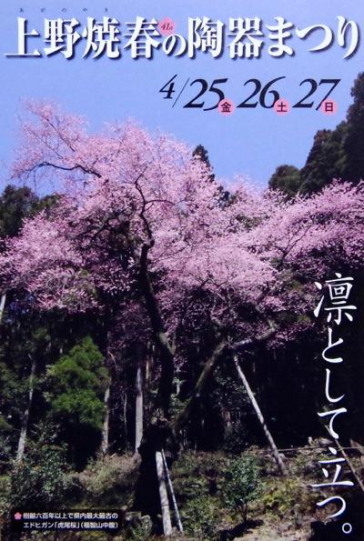 ちなみに写真の桜は福智町名物虎尾桜 http://www.town.fukuchi.lg.jp/annai/oshirase/110308_1.html